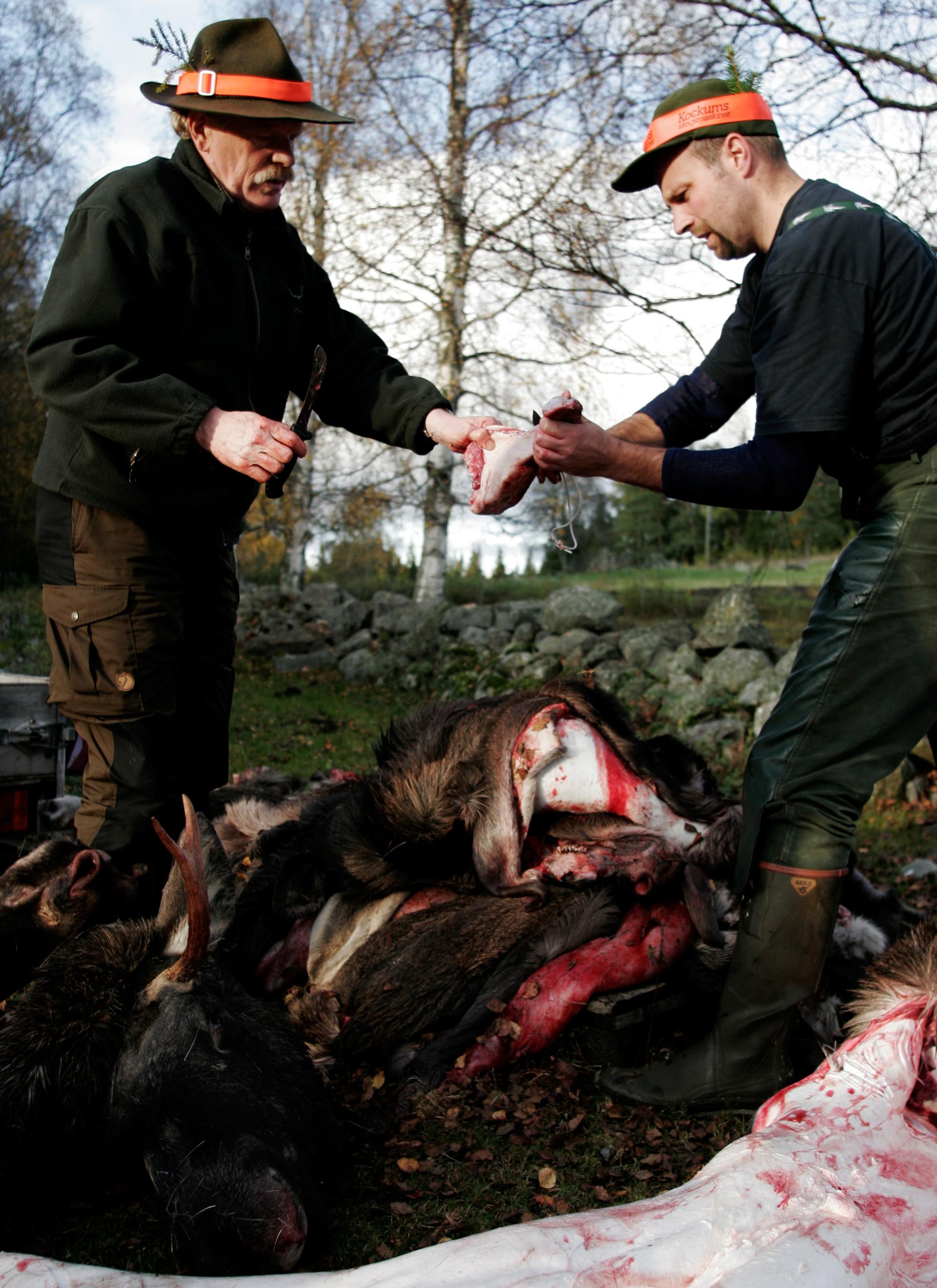 AnnekeHymmen-hunters_09