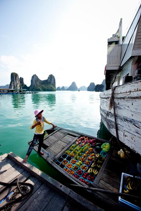 Vietnam_209_450