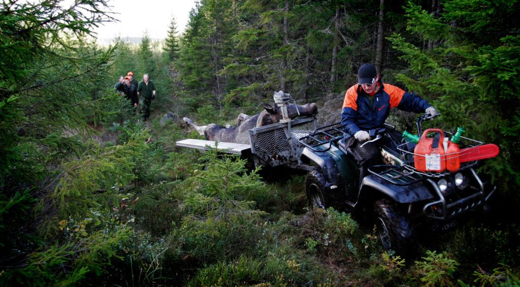 Hunters, Hällefors